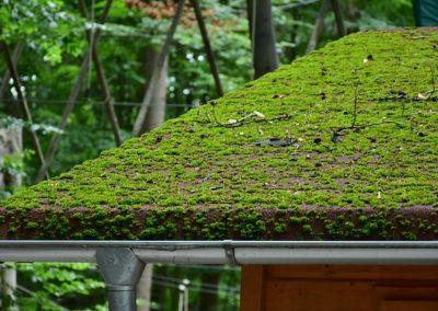 Nettoyage et protection de toiture