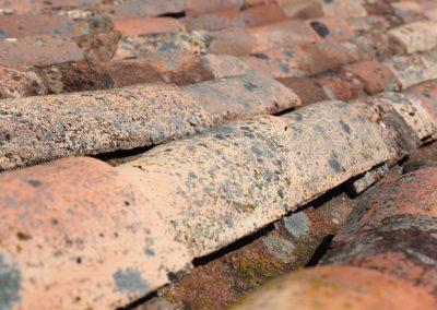 Picco - Bescherming en reiniging van daken